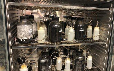Les emballages recyclables, un vecteur de changement