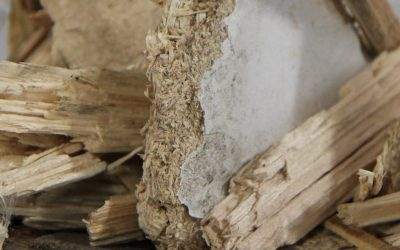 Conditionner la biomasse : le pourquoi du comment!