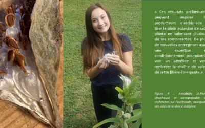 L'asclépiade : valoriser la soie c'est bien, mais valoriser le plant entier c'est mieux!